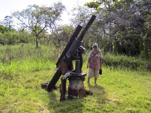 Buna...Japanese anti aircraft gun near war time strip (NXPowerLite)